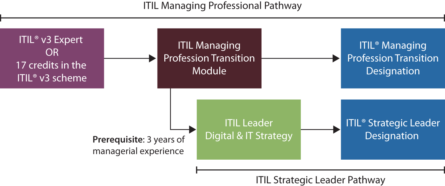 Managing Professional Transition